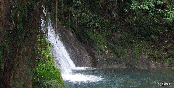 cascade-ecrevisses-guadeloupe