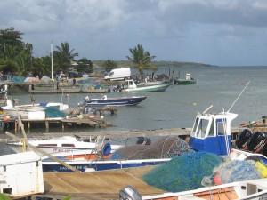 Saintoises Guadeloupe