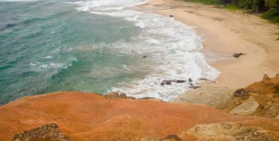 Purple turtle beach La dominique