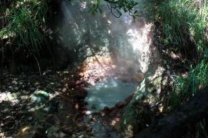 Sulfure Springs La Dominique