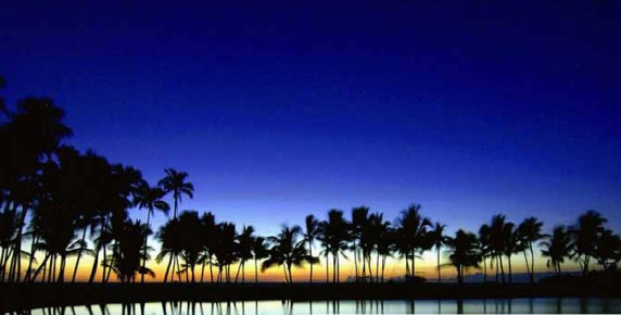 soirée sous les tropiques